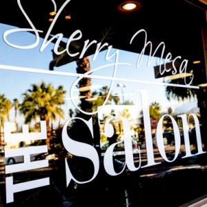 sherry mesa salon interior